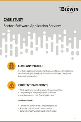 Software Application Services