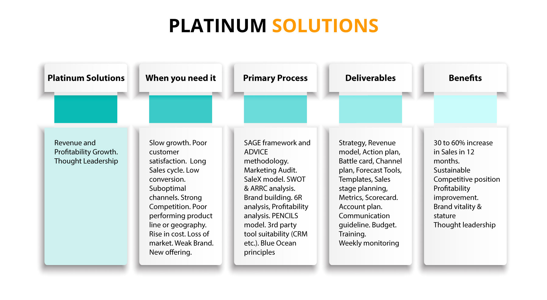 Bizwin Sales Management Consultancy | Platinum Solutions