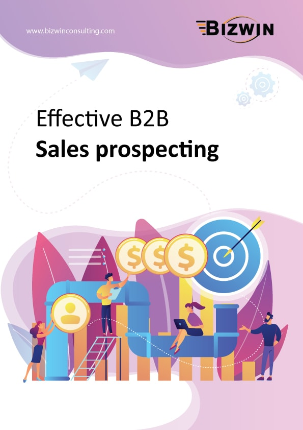 Bizwin | Effective B2B Sales Prospecting