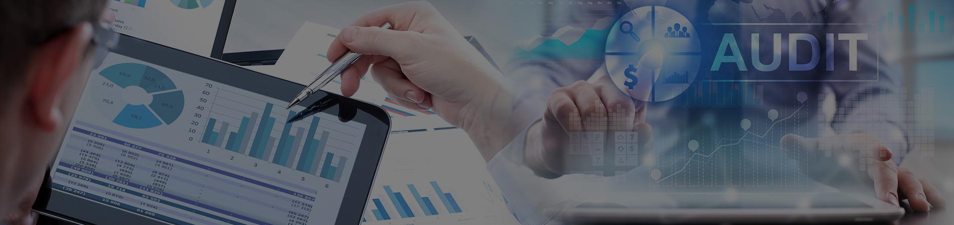 Business Development Function Audit
